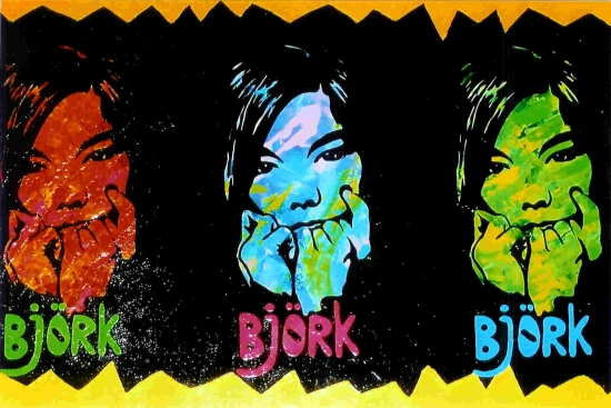 Björk by Monique